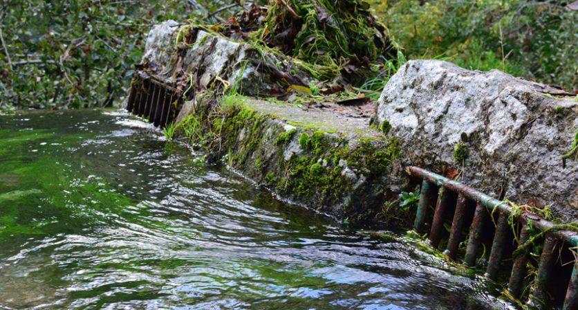 Rio Coura vai ser projetado no Fórum Mundial da Água