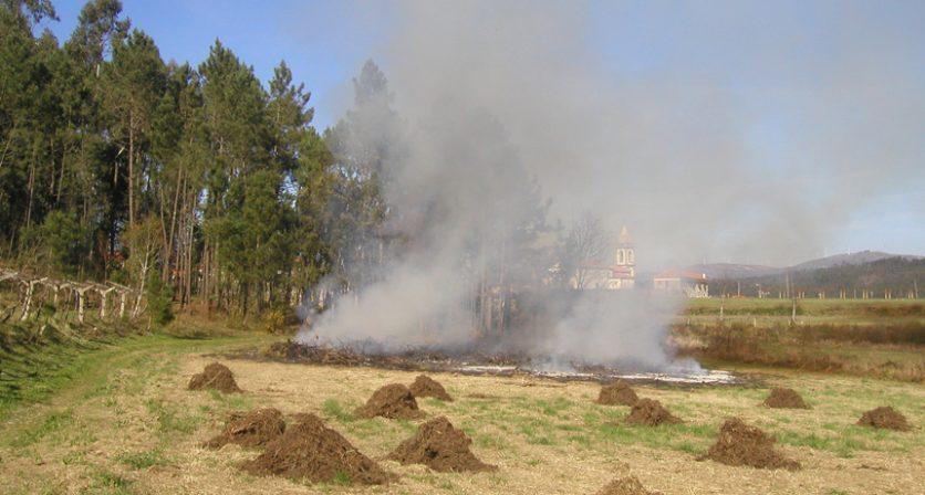 Cancelamento das queimas até 31 de março | aviso