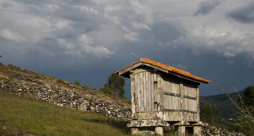Vernadoc Camp Português 1