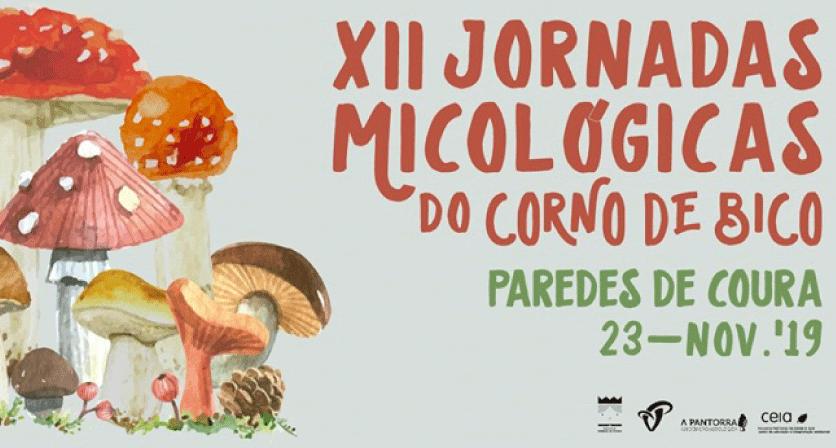 XII JORNADAS MICOLÓGICAS DO CORNO DE BICO